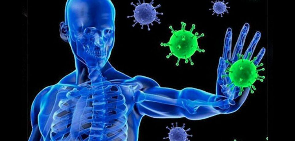 ایمنی بدن در مقابل کرونا ویروس حداقل تا ۸ ماه دوام دارد
